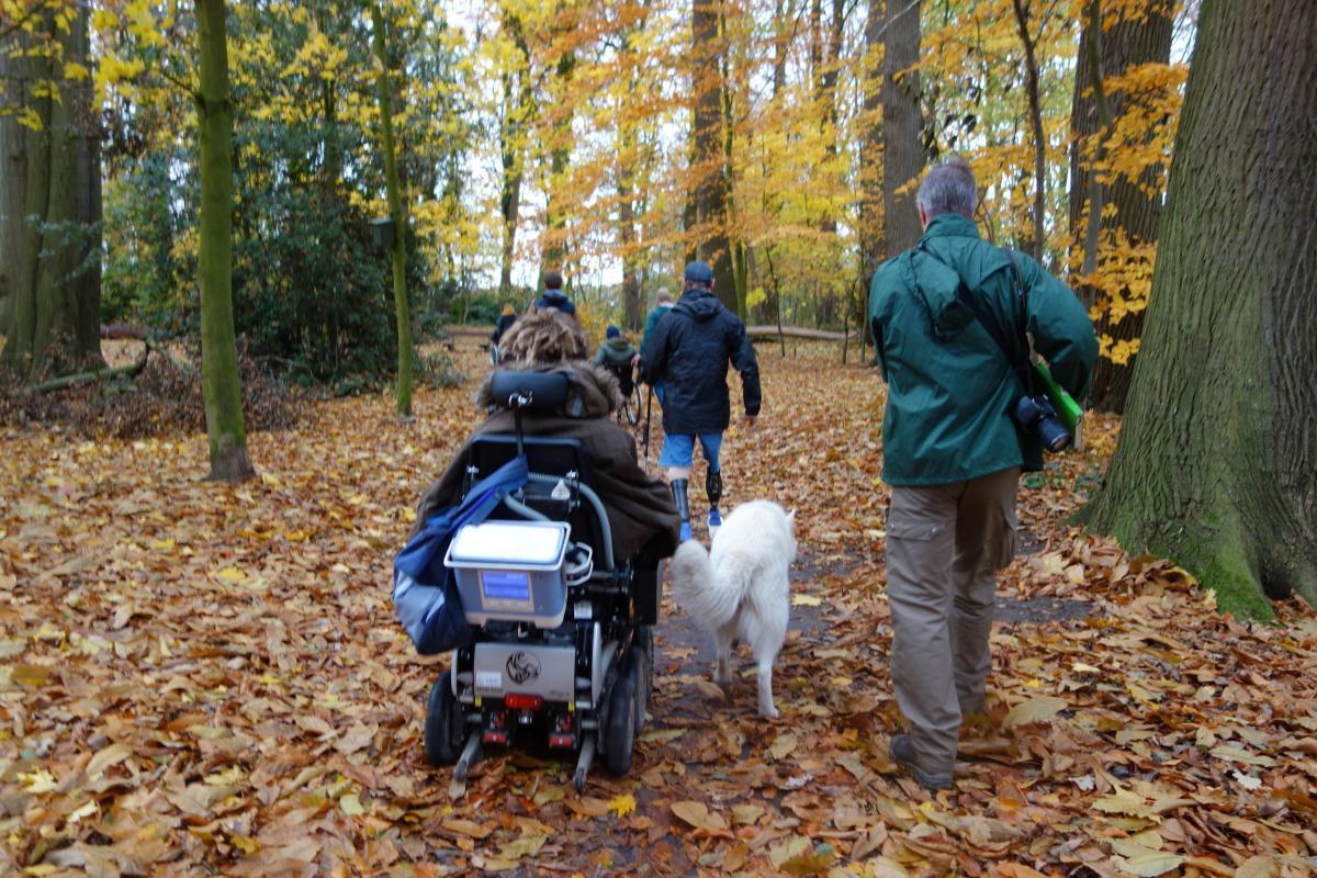 Mensen en een persoon in een rolstoel aan het wandelen in het bos
