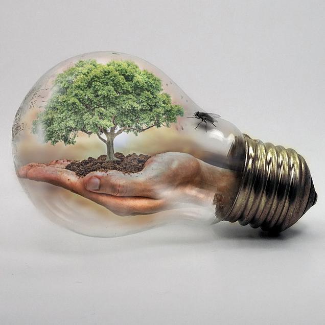 Meer dan 1.000 gratis energiescans leveren zorgsector miljoenenbesparing op